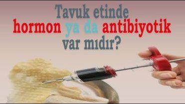 Tavuk etinde hormon ya da antibiyotik var mı?